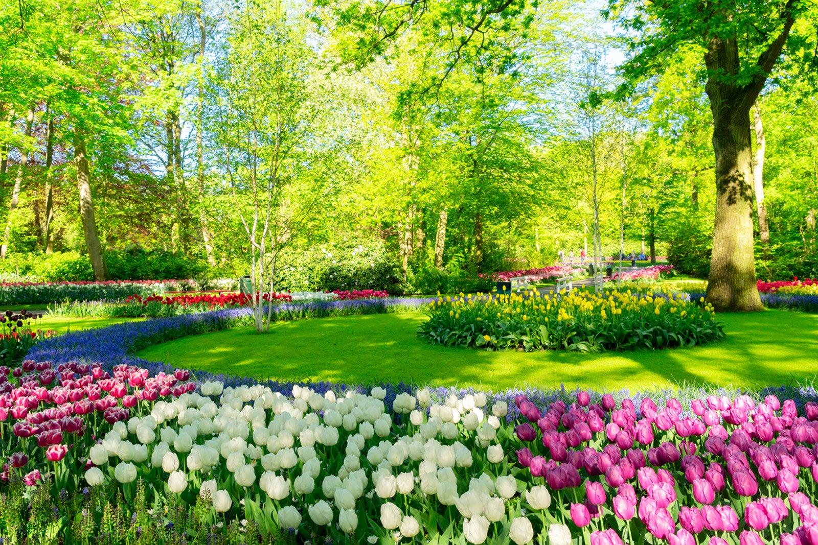 Image result for flower garden