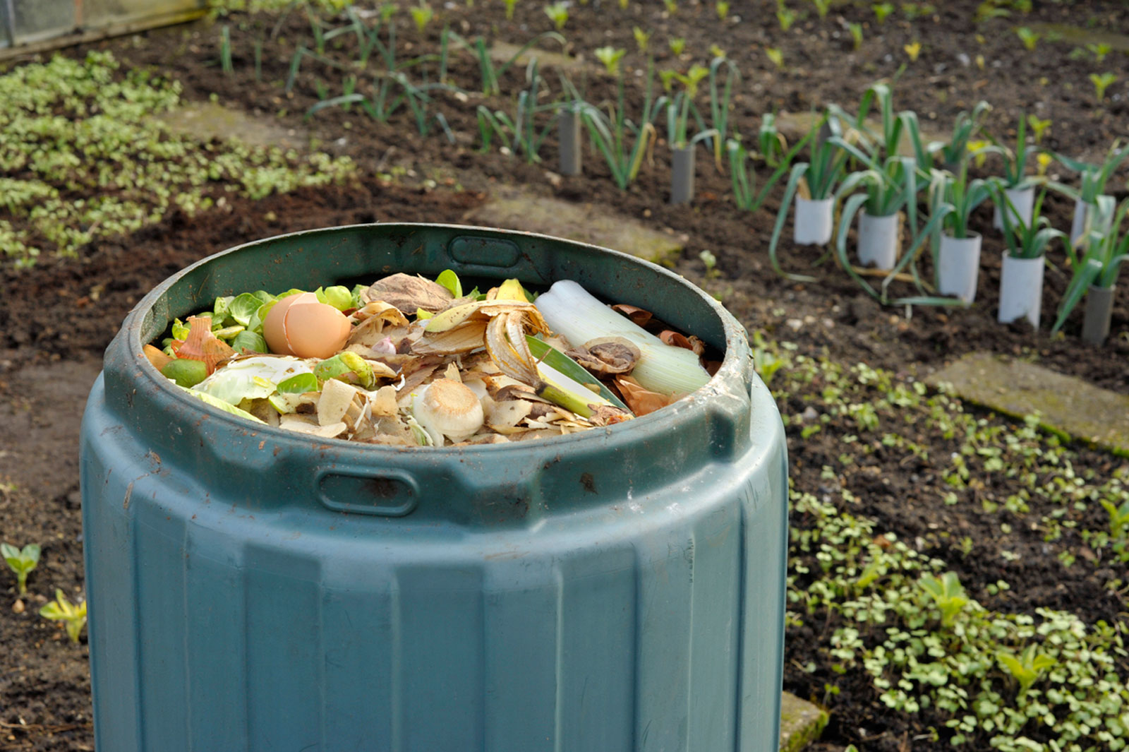 Washing A Compost Bin Ways Of Cleaning Out Compost Bins