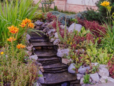 Tips Information About Slope Hillside Gardens Gardening Know How