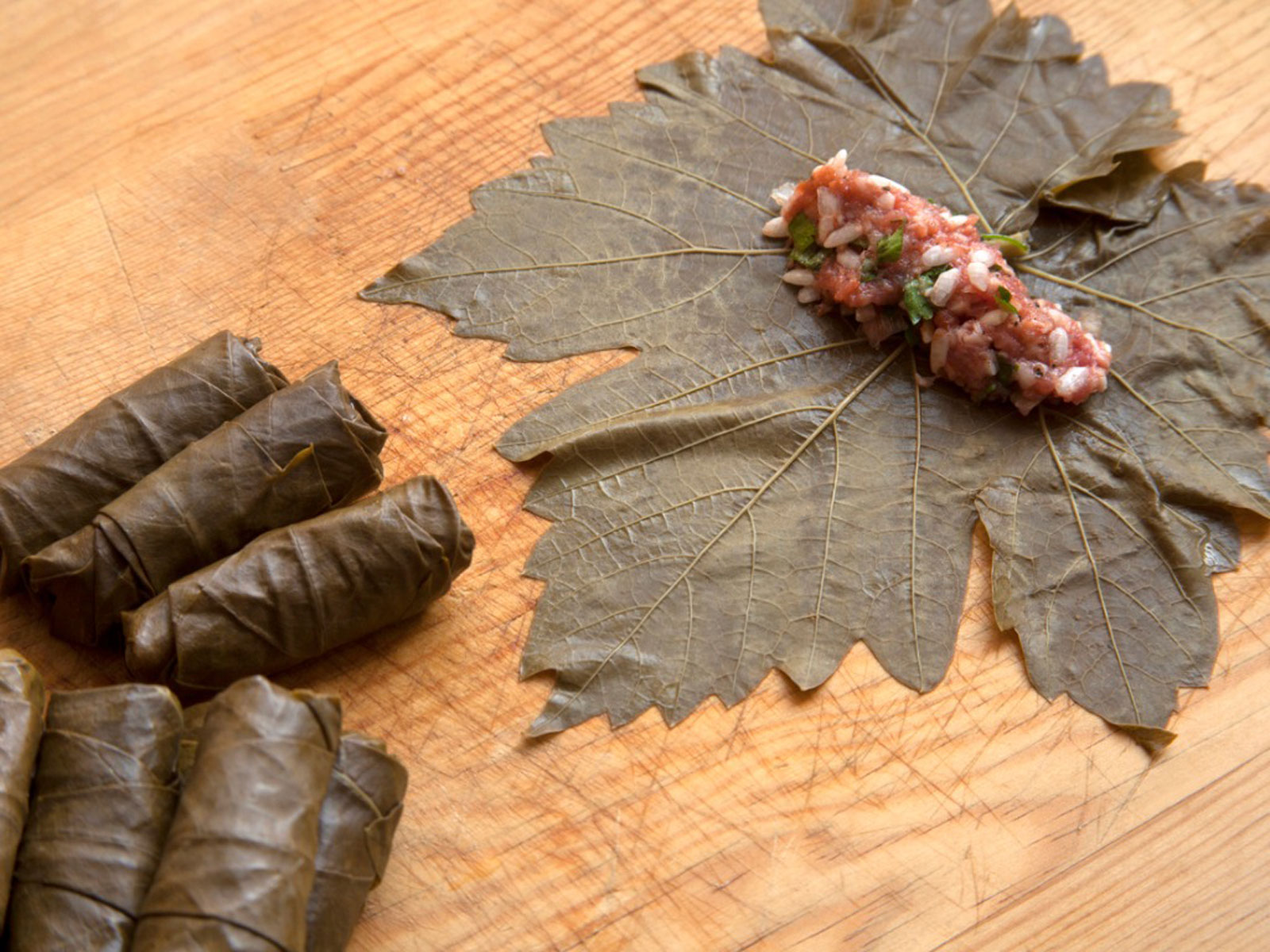 Fresh Grape Leaf Uses Learn About Picking Grape Leaves To Eat