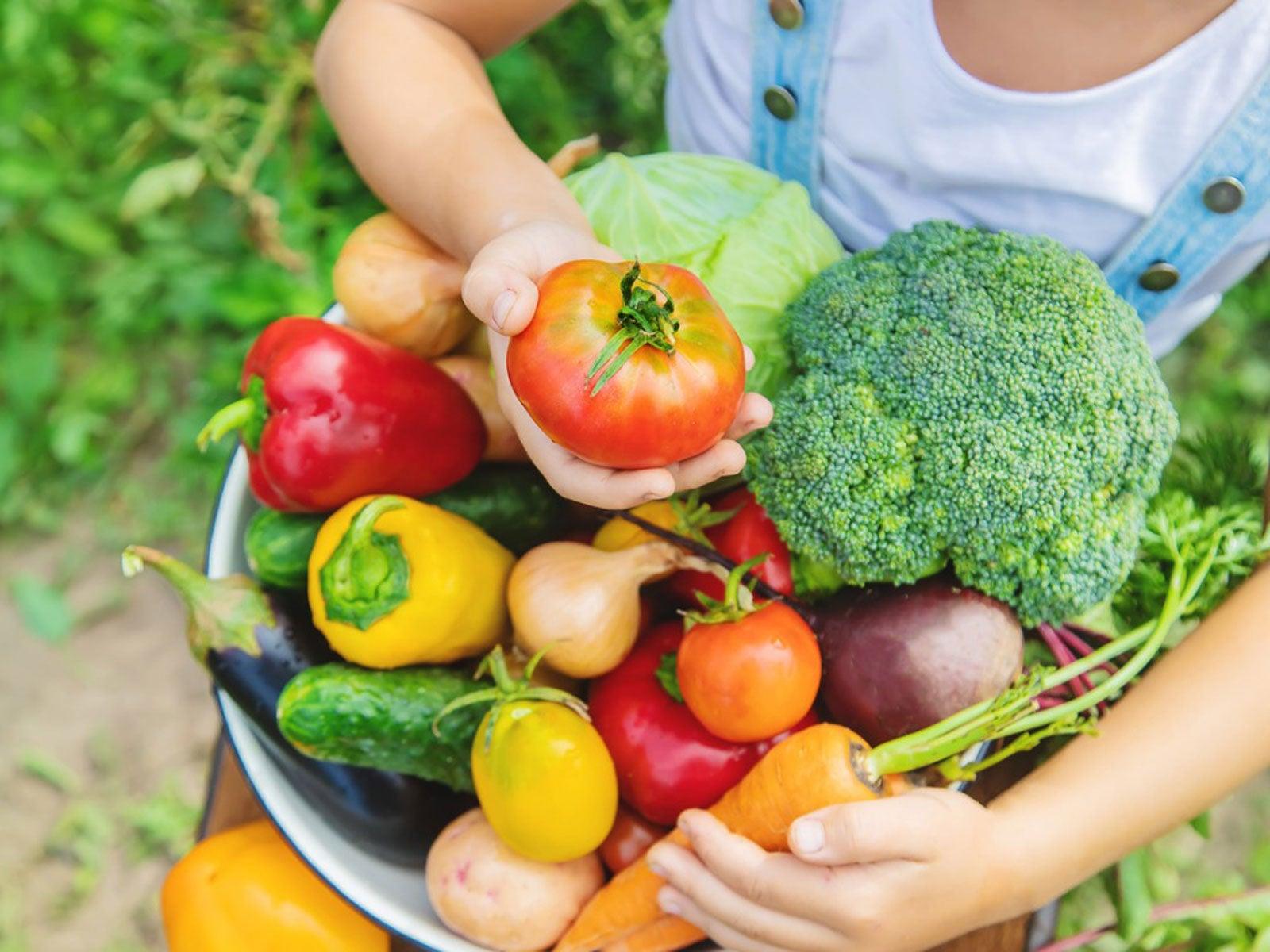 When Are Vegetables Fresh: Tips On Checking For Vegetable Freshness