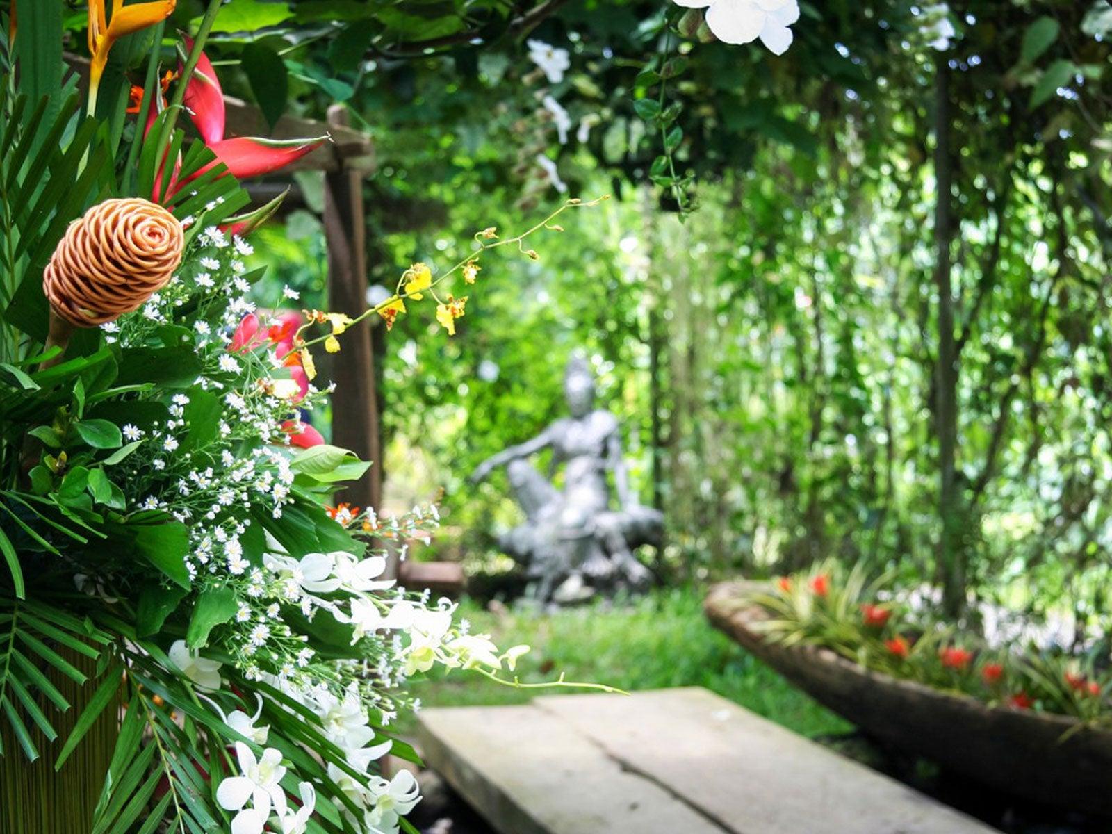Philippine Garden Design: Growing Philippine Plants In ...