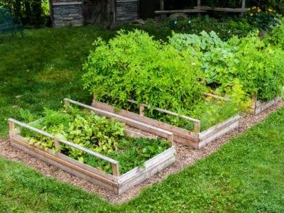 Hillside Garden Beds Creating Raised, How To Build A Raised Garden Box On Slope
