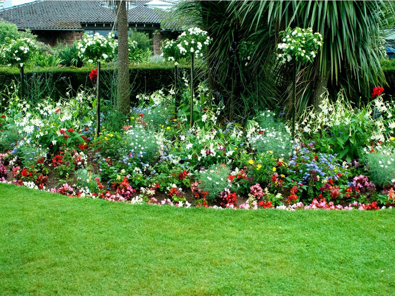 Garden Border Flowers In Full Sun How To Plant Full Sun Edging