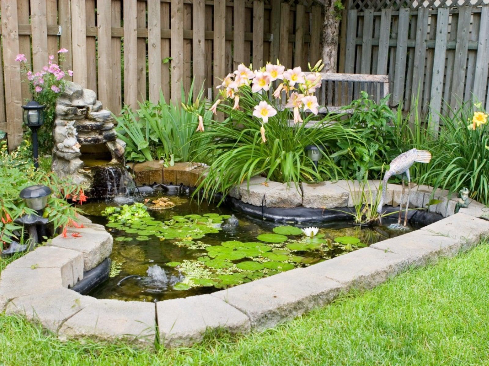 Image result for garden pond