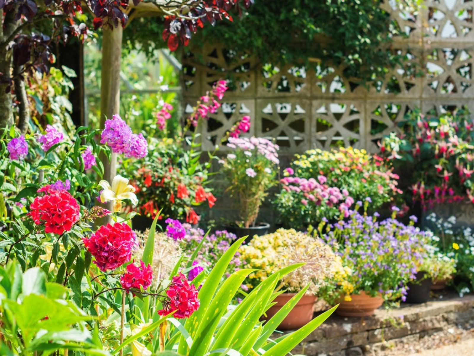 Garden Design Basics Flower Gardening