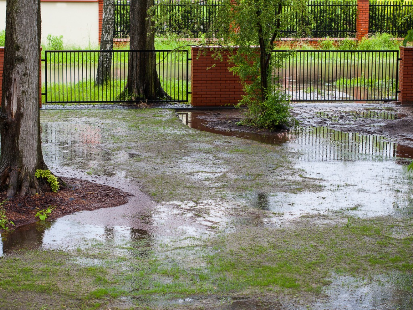 Solutions For Yard Drainage: How To Improve Soil Drainage