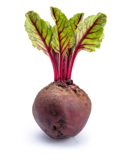 Planting Store Bought Beets Can You Regrow Beets From Scraps