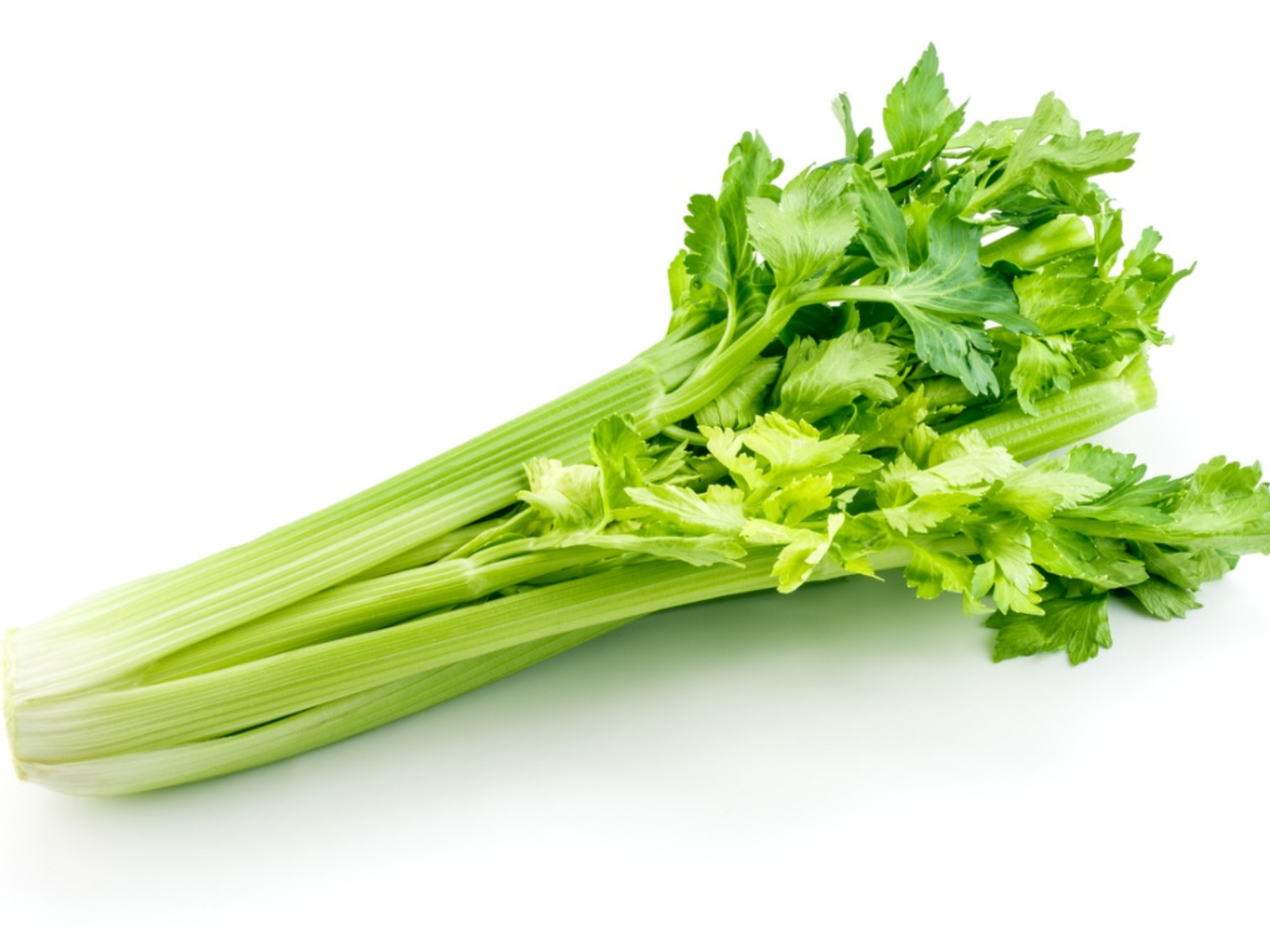 Celery to Fight the Summer Heat